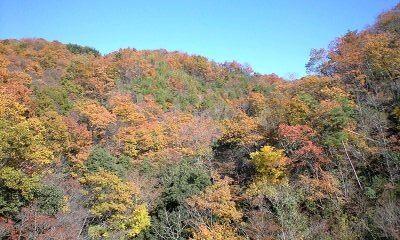 豊国大分県のオススメ3つの秘蔵観光名所