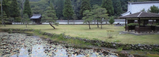 大分県竹田市, 嚶鳴(おうめい)フォーラムからグローカリズム